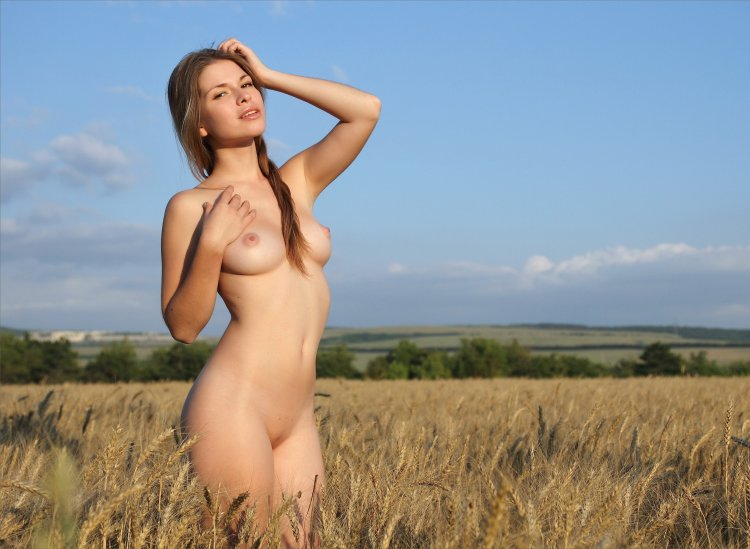 Сиськи в поле (71 фото)
