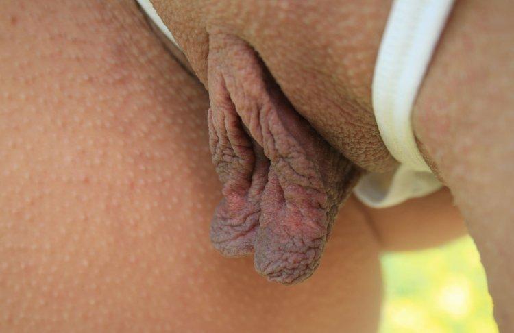 Секс с висячими половыми губками (82 фото)